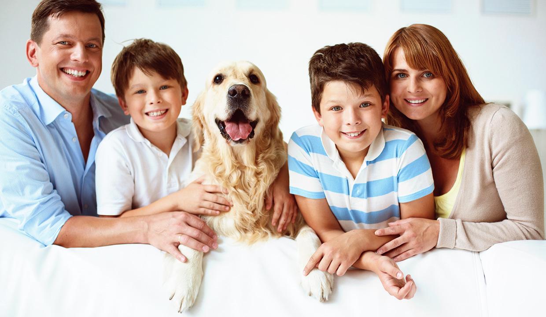 Milyen a kutya személyisége?